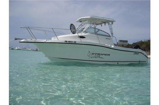 Dagstur: Privat båttur Cayo Pinero