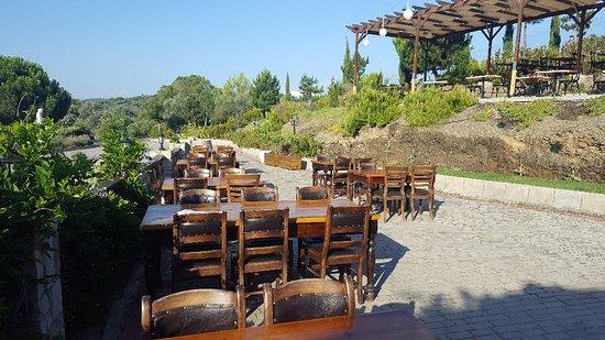 Yedi Bilgeler Restaurant Foto