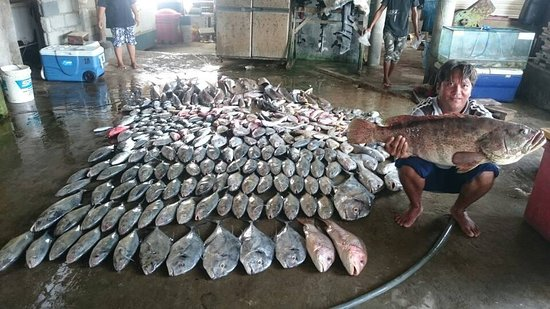 Kelong Elly Bintan Indonesia: the catch