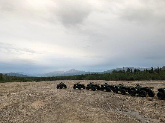 Denali ATV Adventures照片