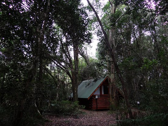 Nature's Valley, South Africa: Forest huts, small and removed from most camping sites