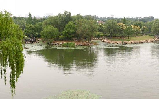 蠡湖公园照片