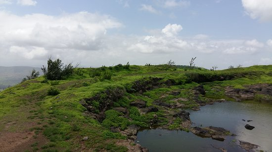 Rohida Fort: fort head area