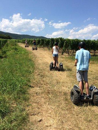 Nos Segway tout-terrain sont idéaux pour parcourir le vignoble
