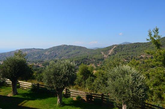 Lysos, Chipre: Uitzicht vanaf balkon
