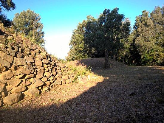 Area Archeologica Etrusca di Poggio Tondo