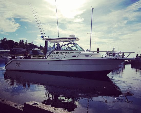 Comox, Canadá: Spacious 29 ft best for 4 or 5 guests