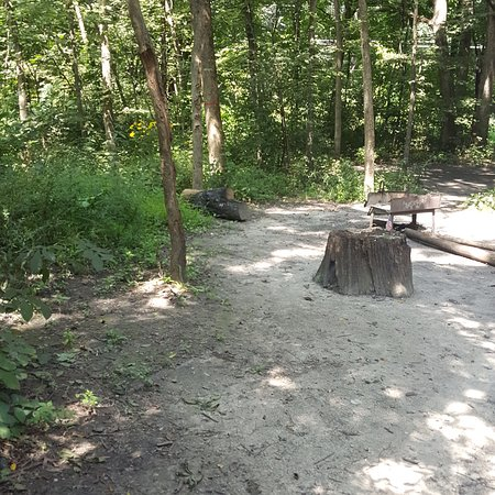 Starved Rock State Park: Starved Rock campground is beautiful and the trails (in pic) accessible from our camper, and mos