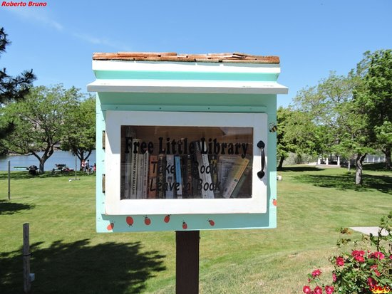 Earl Snell Memorial Park: Free Library