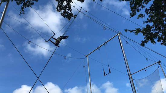 Nomi Flying Trapeze: Miami Flying Trapeze - Layout