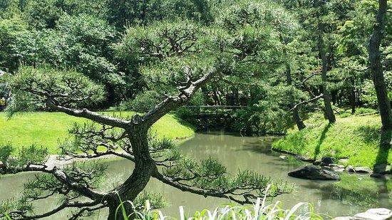 Sankeien Gardens: Water