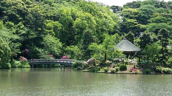 Sankeien Gardens: Bridge