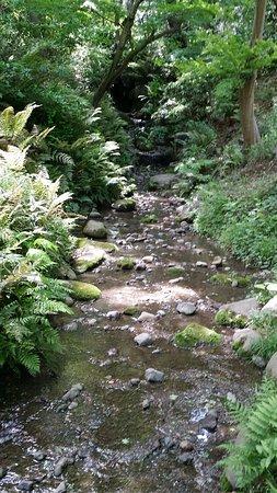 Sankeien Gardens: waterfall