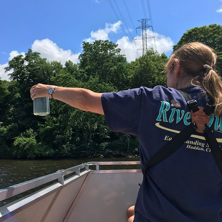 Connecticut River Expeditions - RiverQuest张图片