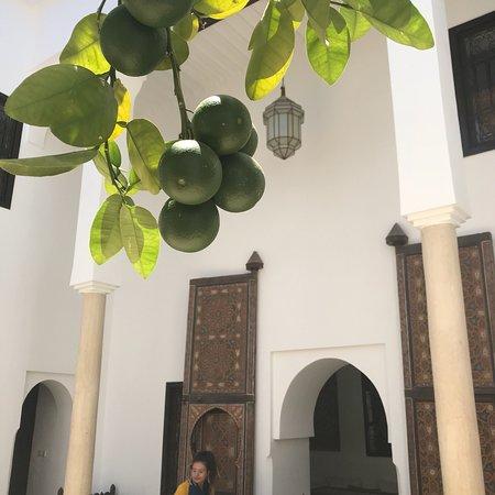 Foto de Riad Porte Royale