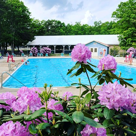 Indian Rock RV Park: Pool is open daily 11-6 Memorial through Labor Day Weekend