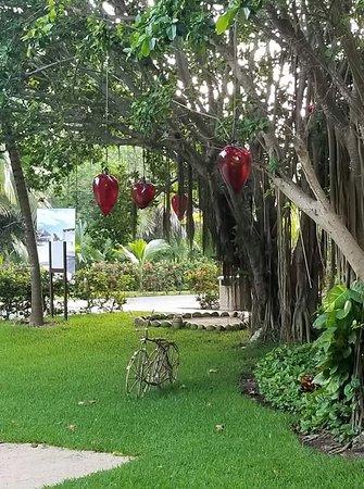 El Dorado Seaside Suites: Lovely spots everywhere!