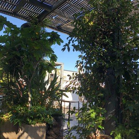 Salón Con Salida A Terraza Green Picture Of Hotel Pulitzer
