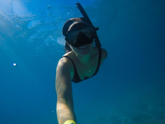 Freedom Fast Cats: Snorkelling off the beach at GKI