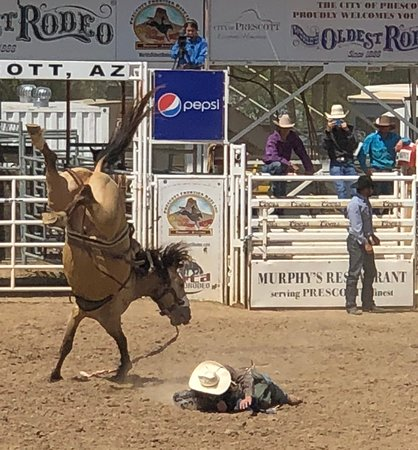 Prescott Frontier Days World S Oldest Rodeo All You