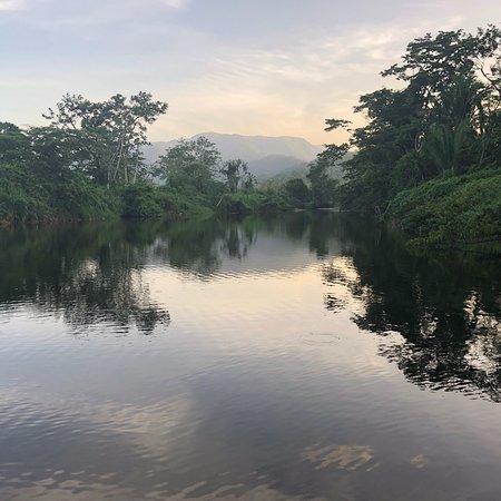 Foto de Sleeping Giant Rainforest Lodge