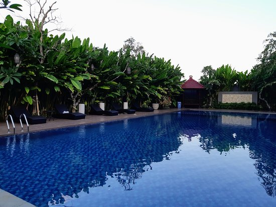 kolam renangnya cukup luas dan sejuk picture of doho homestay rh tripadvisor com