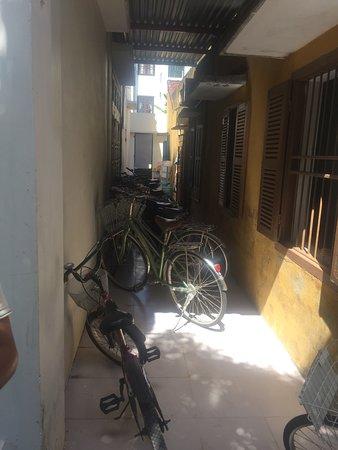 Starfruit Homestay: They have plenty of good bikes for nothing