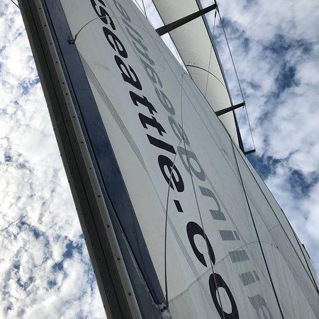 Let's Go Sailing照片