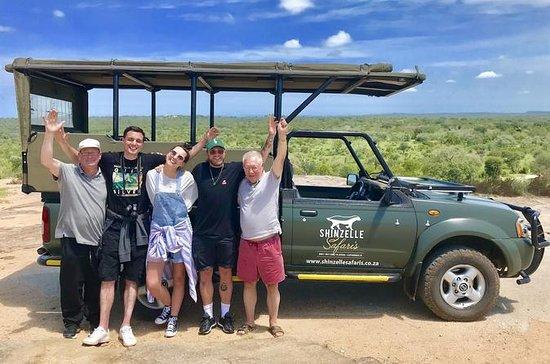 Safari de 5 jours dans le parc Kruger...