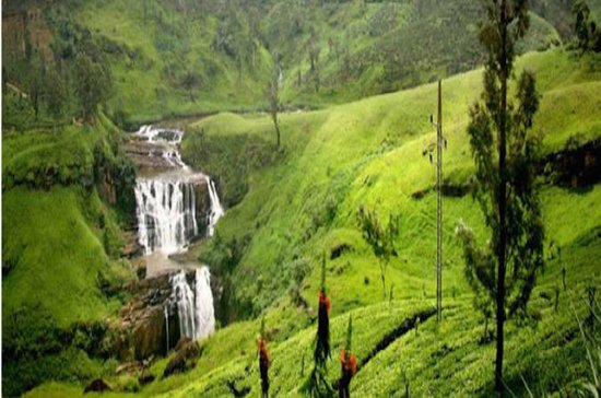 8-dagars Sri Lanka Tour