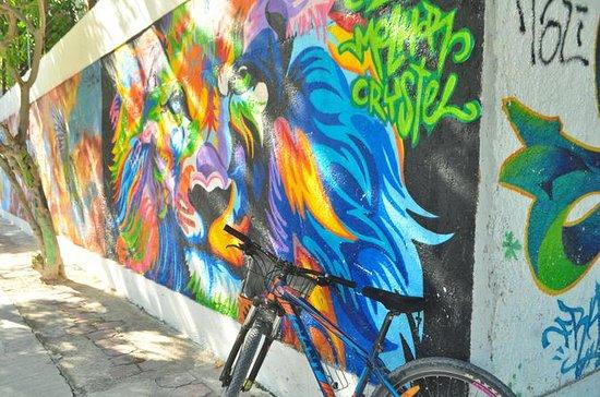 Tour in bicicletta a Playa del Carmen