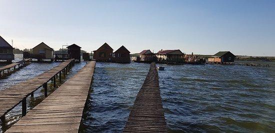 Bokod, Hungary: 20180630_190603_large.jpg