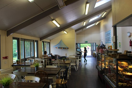 Southwater Country Park - Cafe