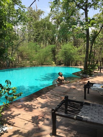 Satpura National Park照片