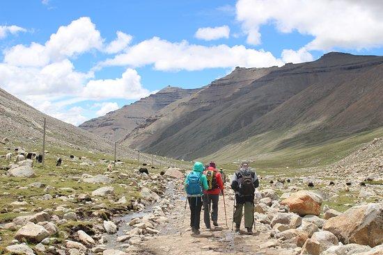 Himalayan Trail Finder Adventure Center: Kailash Mansarobar Tibbet Tour
