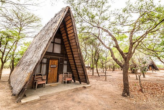 Kuti Wildlife Reserve: A-frame Chalet   Photo by Frank Weitzer.