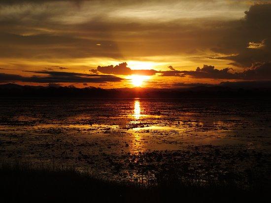 Kuti Wildlife Reserve: Sunset