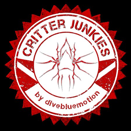 Ambon, Indonesia: Dive Center Critterjunkies by divebluemotion