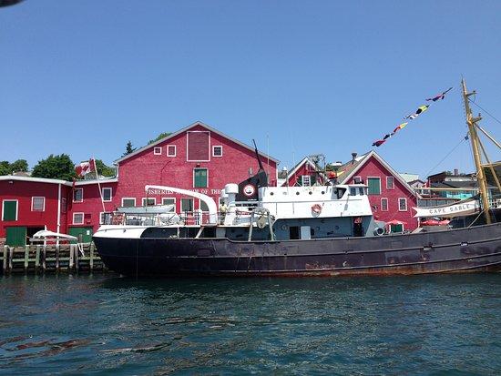Sail Lunenburg with Star Charters照片