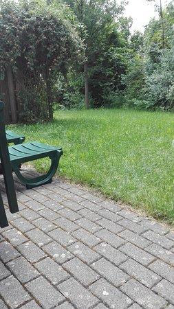 Center Parcs Park Hochsauerland照片