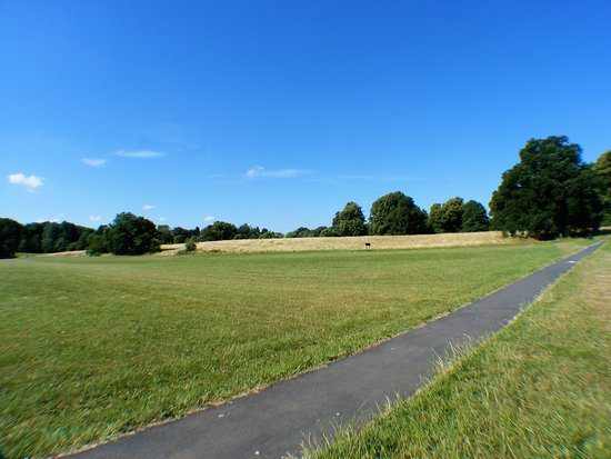 Bulwell Hall Park: Open spaces to play.