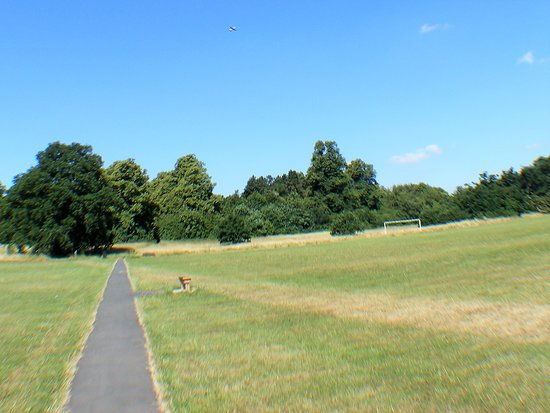Bulwell Hall Park: Open spaces to play and walk the dog.