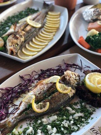 Pervolia, Chipre: Fresh mediterranean flavors