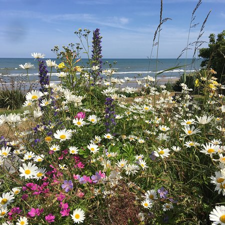 Bettystown, Irland: The Cottages Ireland ~ picturesque organic flower gardens.