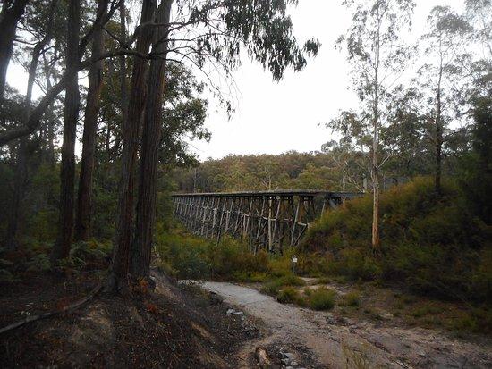 Nowa Nowa, Australia: Trestle Bridge