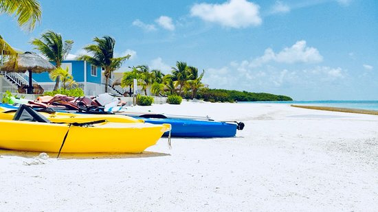 St. George's Caye, Belize : Snorkel away off the beach and explore the marine life around the island