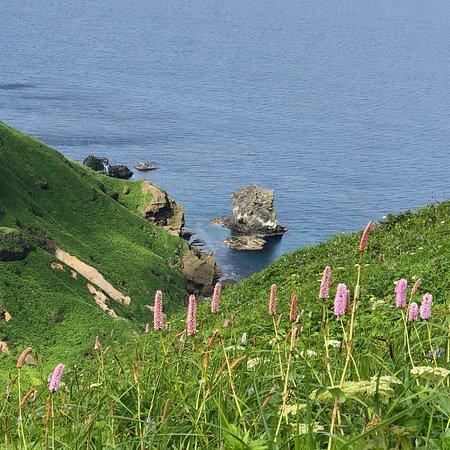 Rebun Island: photo6.jpg