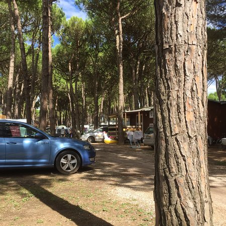 Camping Residence Il Tridente: photo0.jpg