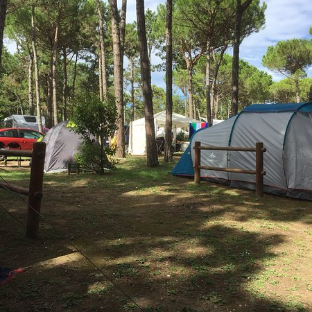 Camping Residence Il Tridente: photo1.jpg