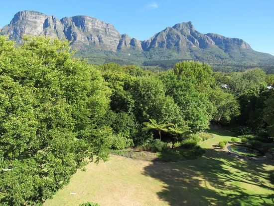 Vineyard Hotel: From room 324